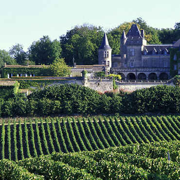 Le vignoble Bordelais